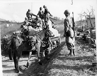 10th Mountain Division - The division advancing in Italy in April 1945.