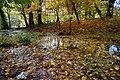 131103 Hokkaido University Botanical Gardens Sapporo Hokkaido Japan08bs.jpg