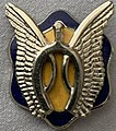 17th Cavalry Regiment Unit Affiliation Badge.jpg