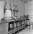 1960 Salle de traite du CNRZ-5-cliche Jean-Joseph Weber.jpg