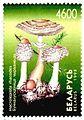 1998. Stamp of Belarus 0288.jpg