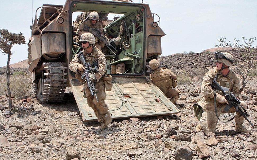 1st platoon, Alpha Company, 1st Battalion, 9th Marine Regiment, 24th MEU, Djibouti, 2010