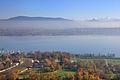 2011-11-17 13-42-28 Switzerland Canton de Genève Bellevue.jpg