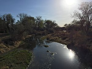 Carson River - The lower reaches of the Carson River near Fallon