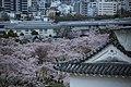 20160403 Himeji-Castle 3352 (26758502991).jpg