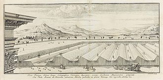 Nicolas Fatio de Duillier - Engraving for a work published by Nicolas Fatio de Duillier in 1699, describing his invention of sloping fruit walls, intended to collect heat from sunlight and thus to promote plant growth.