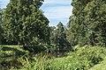 2016 Park w Wojanowie 1.jpg