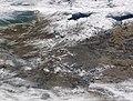 2018-03-01 Deutschland NASA Aqua-MODIS via Worldview.jpg