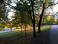"""20181012 - 18 - Montreal (Mount Royal Park) - """"Fade to Nothing-Stay Forever"""".jpg"""