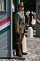 20190502 Guard of Sándor Palace - Budapest - 1102 2030 DxO.jpg