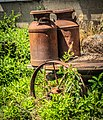20200712-Rustic - antique milk can - Flickr - C E Andersen.jpg