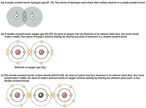 208 Covalent Bonding-01