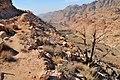31 Dana Feynan Trail - View of the Valley - panoramio.jpg