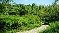 5349 Bojentsi, Bulgaria - panoramio (12).jpg