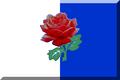 600px Bianco e Blu con rosa Rossa.png
