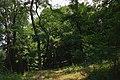 73-101-5011 парк Шіллера (1).jpg