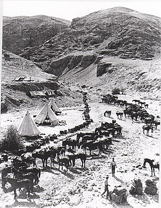 """British occupation of the Jordan Valley - Horse lines of """"A"""" Squadron 9th Light Horse Regiment (3rd Light Horse Brigade)"""