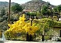 A@a palechori village nicosia cy - panoramio (4).jpg