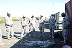 AFNORTH Battalion quarterly training at the Alliance Training Area Chievres, Belgium 140612-A-HZ738-018.jpg