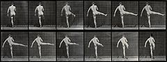 A man performing ballet. Photogravure after Eadweard Muybrid Wellcome V0048687.jpg