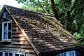 A moss covered roof, Sedgwick Lane, Nuthurst, West Sussex, England.JPG