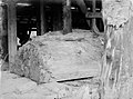 A piece of Kauri being processed (AM 75903-1).jpg