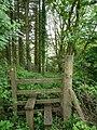 A stile just above Muddiford. - geograph.org.uk - 812985.jpg