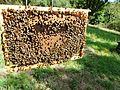 Abeilles et ruches 08.JPG