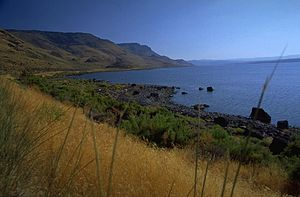 Lake County, Oregon - The East shore of Lake Abert.
