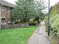 Acle Gardens - geograph.org.uk - 1465883.jpg