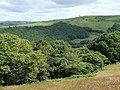 Across Cwm Berwyn, Ceredigion - geograph.org.uk - 903826.jpg