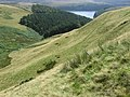 Across Ridge Clough - geograph.org.uk - 1425081.jpg