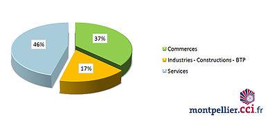 Chambre de commerce et d 39 industrie de montpellier wikimonde for Chambre de commerce montpellier