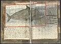 Adriaen Coenen's Visboeck - KB 78 E 54 - folios 085v (left) and 086r (right).jpg
