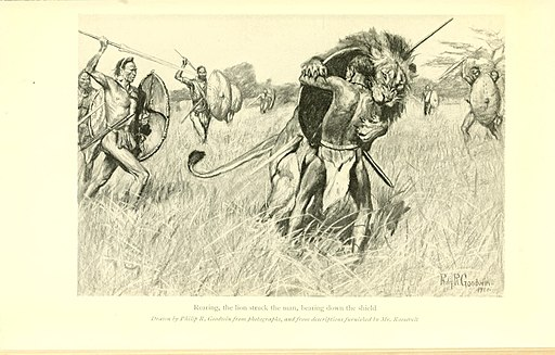 African game trails (Plate 32) (7060471921)
