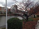 Aioibashi Bridge and Otagawa River.JPG