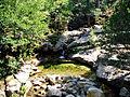 Albertacce-ruisseau Cuccagna.jpg
