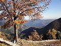 Alta Garrotxa from Rocabruna Castle 3.JPG