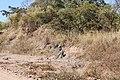Alto Araguaia - State of Mato Grosso, Brazil - panoramio (353).jpg