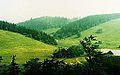 Andrzejowka ze stoku Waligory, lipiec 1993r.jpg