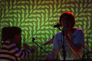 Animal Collective - On tour promoting the album in June 2009