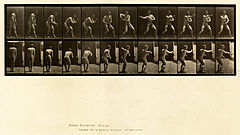 Animal locomotion. Plate 285 (Boston Public Library).jpg
