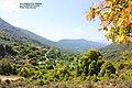 Ano Skafidoti, Preveza, Greece.jpg
