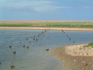 Salthouse - Remains of WW2 anti tank defence on Salthouse marsh