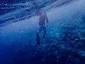 Aqua (Unsplash).jpg
