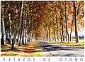 Aranjuez. Retazos de otoño (15480001512).jpg