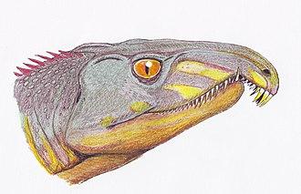 Proterosuchidae - Image: Archosaurus ross 1DB