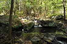Bear Swamp Wikipedia