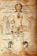 Astrological signs and human body parts 14th century.jpg