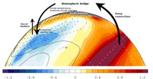 Pacific decadal oscillation - The atmospheric bridge during El Niño.